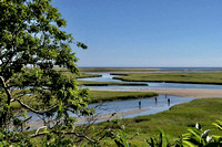Nauset Marsh, Fort Hill, Eastham, MA